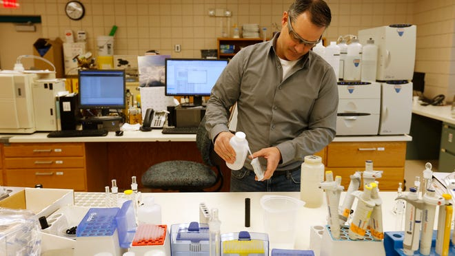 Jeff Mitchell, lab supervisor with Des Moines Water Works, prepares to run a test on water collected Thursday in Des Moines. Mitchell said lab workers collect samples daily from the Des Moines and Raccoon rivers to monitor chlorides, nitrates, sulfates, pH, and various cultures and bacterias.