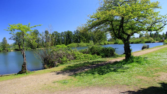 A trail winds all the way around Walter Wirth Lake at Cascades Gateway Park.