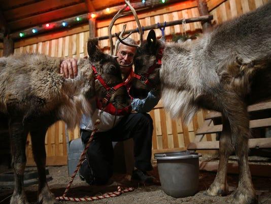 636494931801341010-reindeer-1.jpg