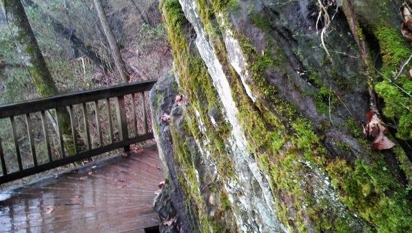 Rocks along the Ijams River Trail.