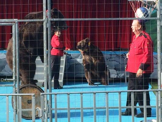 Bear Mountain Wildlife Show