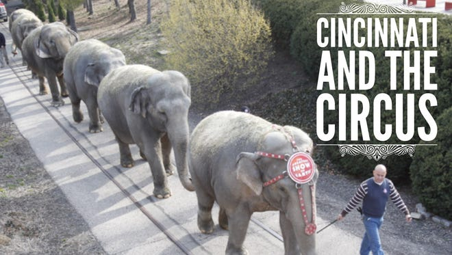 The final Ringling Bros. and Barnum & Bailey Circus show is May 21 in New York. The circus visited Cincinnati for many years, bringing elephants and other animals to the streets of Downtown. Take a look back at some Cincinnati circus history in this gallery.  Here, elephants walk through Sawyer Point in 2015.