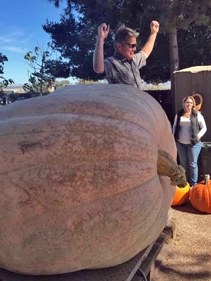Russ Pingrey of Napa cheers as he collects the top prize in Borchard Farms' Pumpkin Weigh In