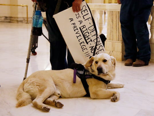 Jerry, the service dog of Kathy Renbarger of Seminole, Okla., sits at her feet as she holds a pro-gun sign at the state Capitol in Oklahoma City, May 7, 2018, as a small group of gun rights supporters rallied outside Oklahoma Gov. Mary Fallin's office. (Photo: Sue Ogrocki, AP)