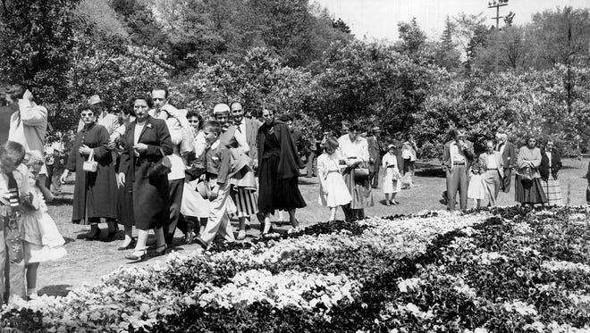 Their Bloomin' Best - The pansy bed at Highland Park took center stage against a lavender backdrop of lilacs for these visitors who viewed a colorful preview of Lilac Sundat at Highland Park. More than 100,000 visitors are expected. (Staff photo) DC 6/23/1954