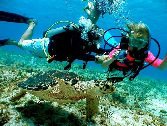 10Best: Scuba sites to try your first dive