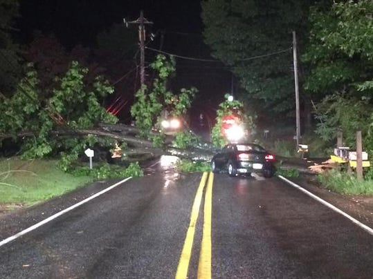 A tree fell across Harmony Grove Road in Dover Township, blocking traffic in both directions.