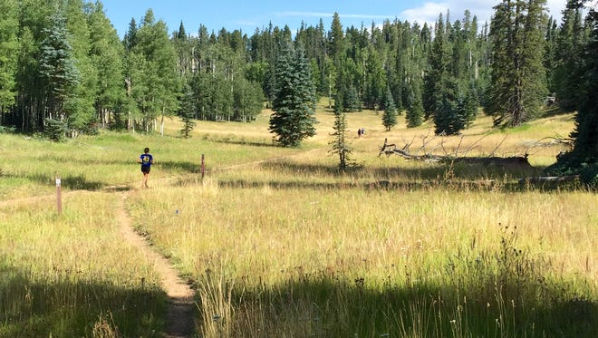 Jeanne Debarr of Cave Creek makes her way along the Arizona Trail on the Kaibab Plateau near the North Rim of the Grand Canyon.