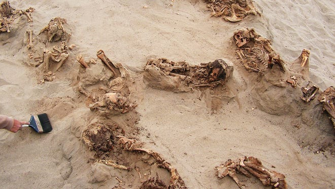 This photo, provided by National Geographic, shows more than a dozen bodies preserved in dry sand for more than 500 years, at the Huanchaquito-Las Llamas site near Trujillo, Peru.