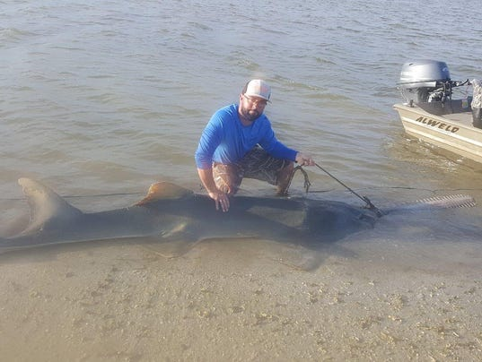 Naples man fishing in chokoloskee helps remove rope from for Chokoloskee fishing report