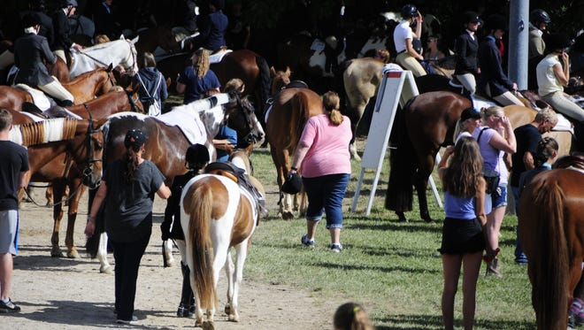 The St. Clair County 4-H Fair continues today under sunny skies at Goodells County Park.
