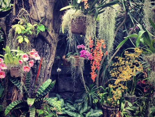 The orchid range at Duke Farms.
