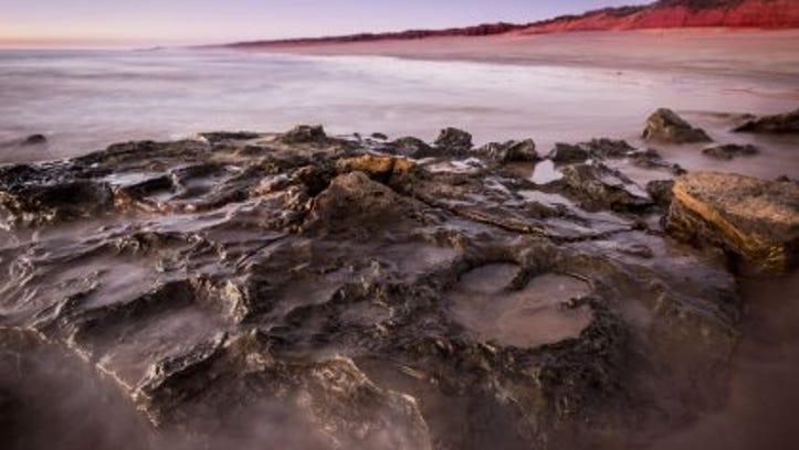 Dinosaur tracks in the Walmadany area of Australia.