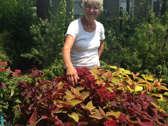 Owner of The Garden Gate, Emily Peterson says, ''The fall is the best time of year in our area to garden.''