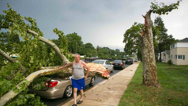 Tim and Judy Hegesi said they heard a loud bang then their electricity went out at Greenville on 141 Apartments and Townhomes where a large tree crashed onto several cars. No one was hurt.