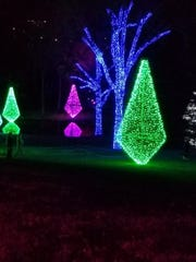 Seniors visited The Lights at Cheekwood.