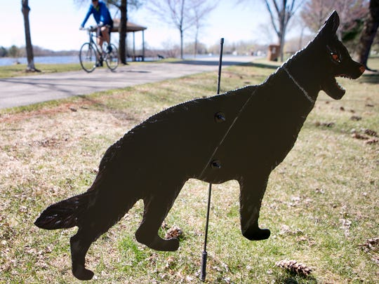 A bicyclist rides past a cardboard dog cutout intended to scare away birds in Pfiffner Pioneer Park in Stevens Point on Monday.