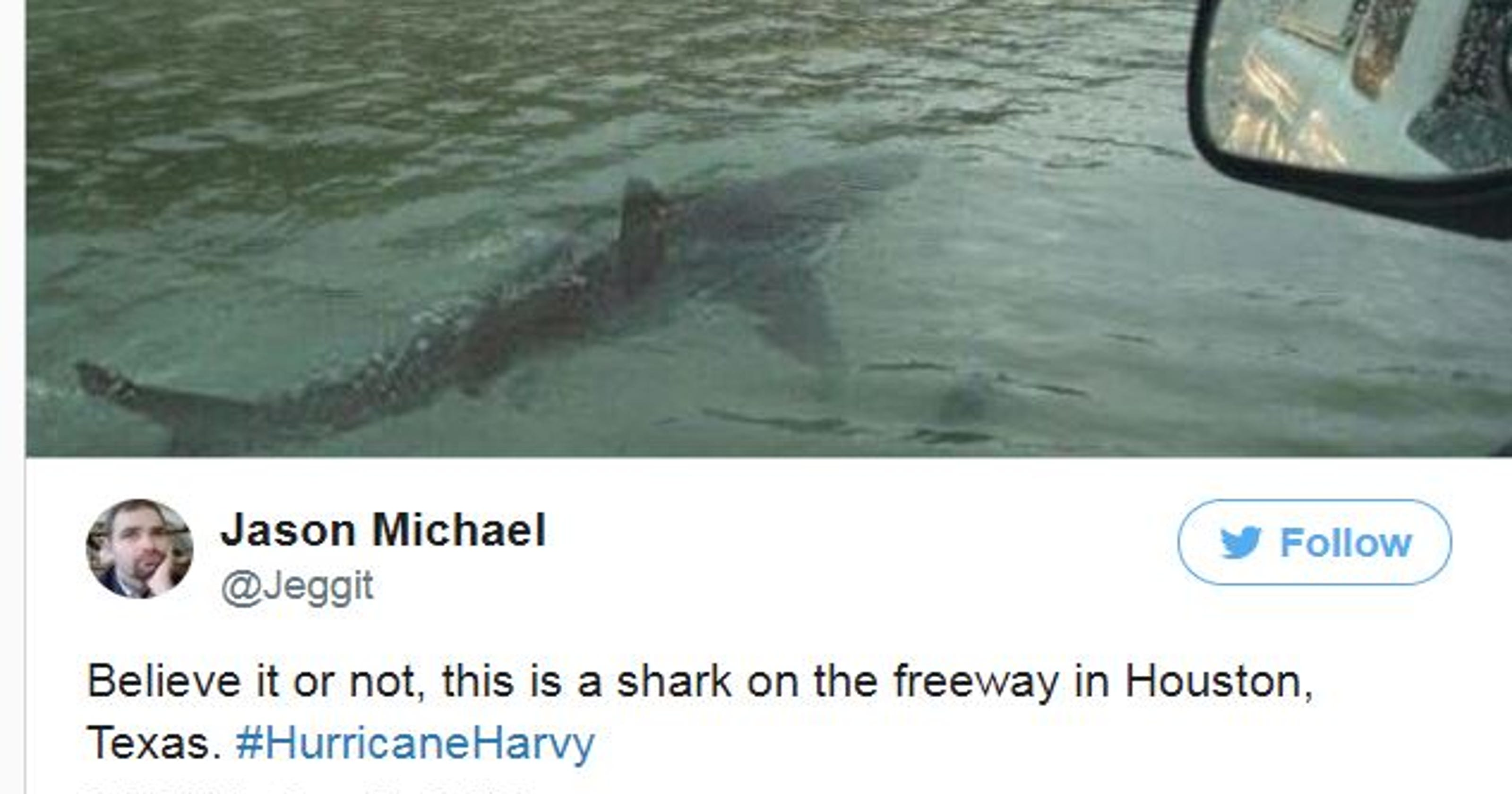 Hurricane Harvey That Shark Photo Is Fake And Fueling A Problem