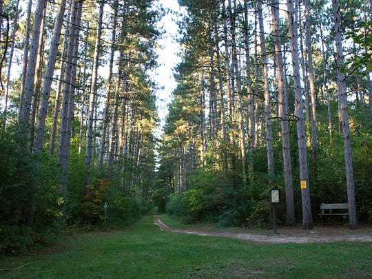The Kettle Moraine's Scuppernong Trails feature three trail loops through pine plantations and mixed hardwood forest, providing options for hikes from 2 to 5 miles.