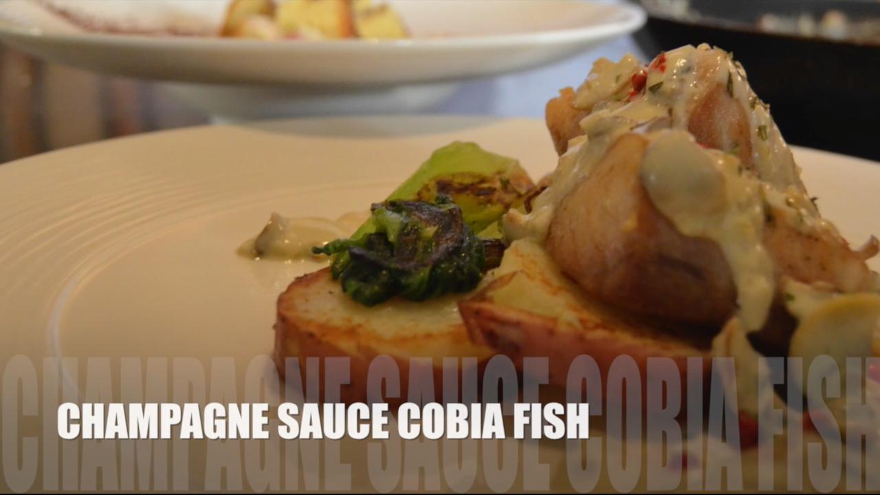 Recipe 2 champagne sauce cobia fish for Cobia fish recipe
