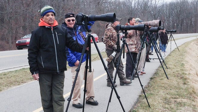 Flocks of nature-loving photographers dubbed the 'Osprey Paparazzi' can be found daily at Kensington Metropark in Oakland County.