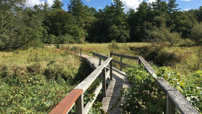 A boardwalk across Poor Meadow Brook at the Smith Nawazelski Conservation Area in Hanson.