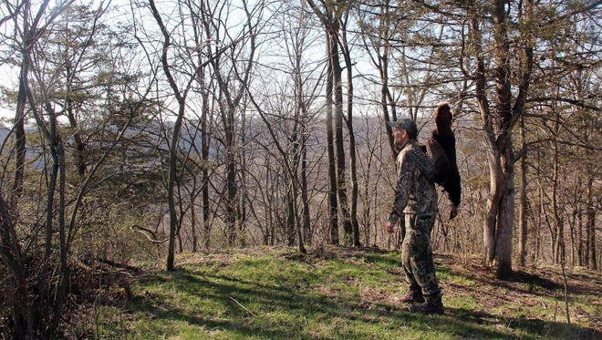 Paul A. Smith overlooks a valley as he carries a wild turkey he shot while hunting near Dickeyville.