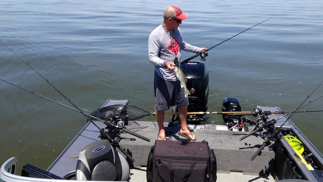 Brett Jolly positions a trolling rod after landing a walleye on Green Bay. Jolly, 37, has worked as a fishing guide for slightly more than half his life.