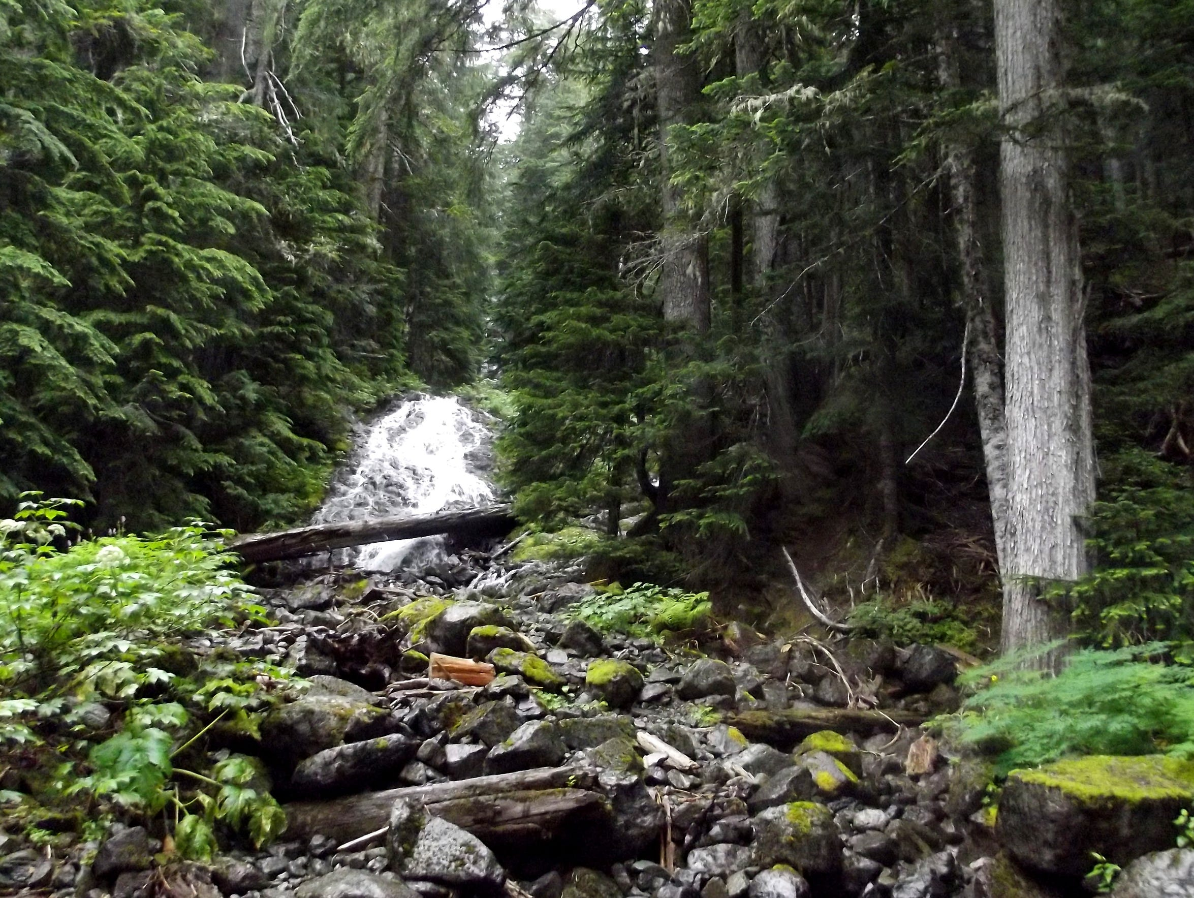 A small waterfall gushing down a steep section of Mt.