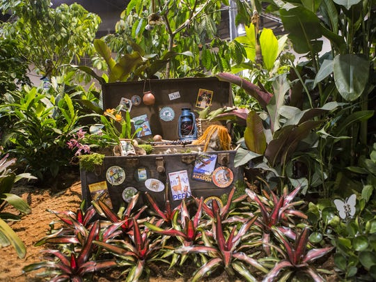 """The University of Delaware's display at the Philadelphia Flower Show features an interpretive take on the """"movie"""" theme on Thursday evening. The display is filled with tropical and rainforest plants used in healing under the theme the viewer is the """"director"""" of their life and care."""