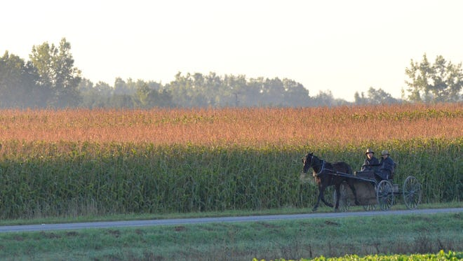 Two Amish boys drive a horse and cart Tuesday north on Shephard Road in Maple Valley Township near Brown City.