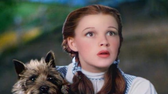 Think your pooch can match Toto's effervescence? Audition for the Delaware Children's Theatre.