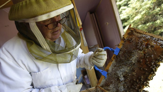 Beekeeper Larry Cain handles bees at his Grand Chute home.