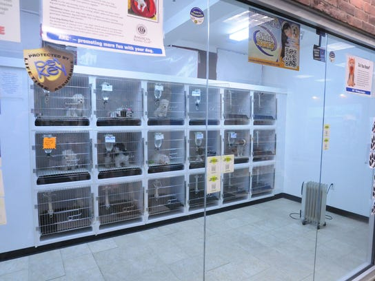 PREFERRED, USE INSIDEPet Zone cages