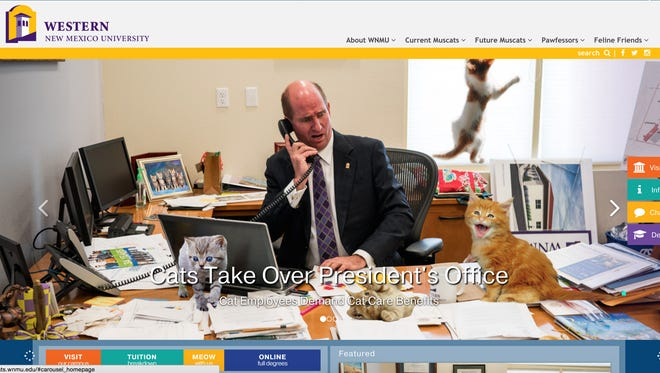 Cats took over the WNMU website on Friday.