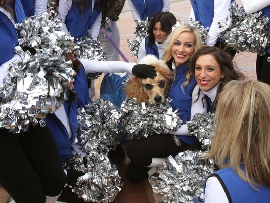 Opinion The Detroit Lions Need To Add Cheerleaders