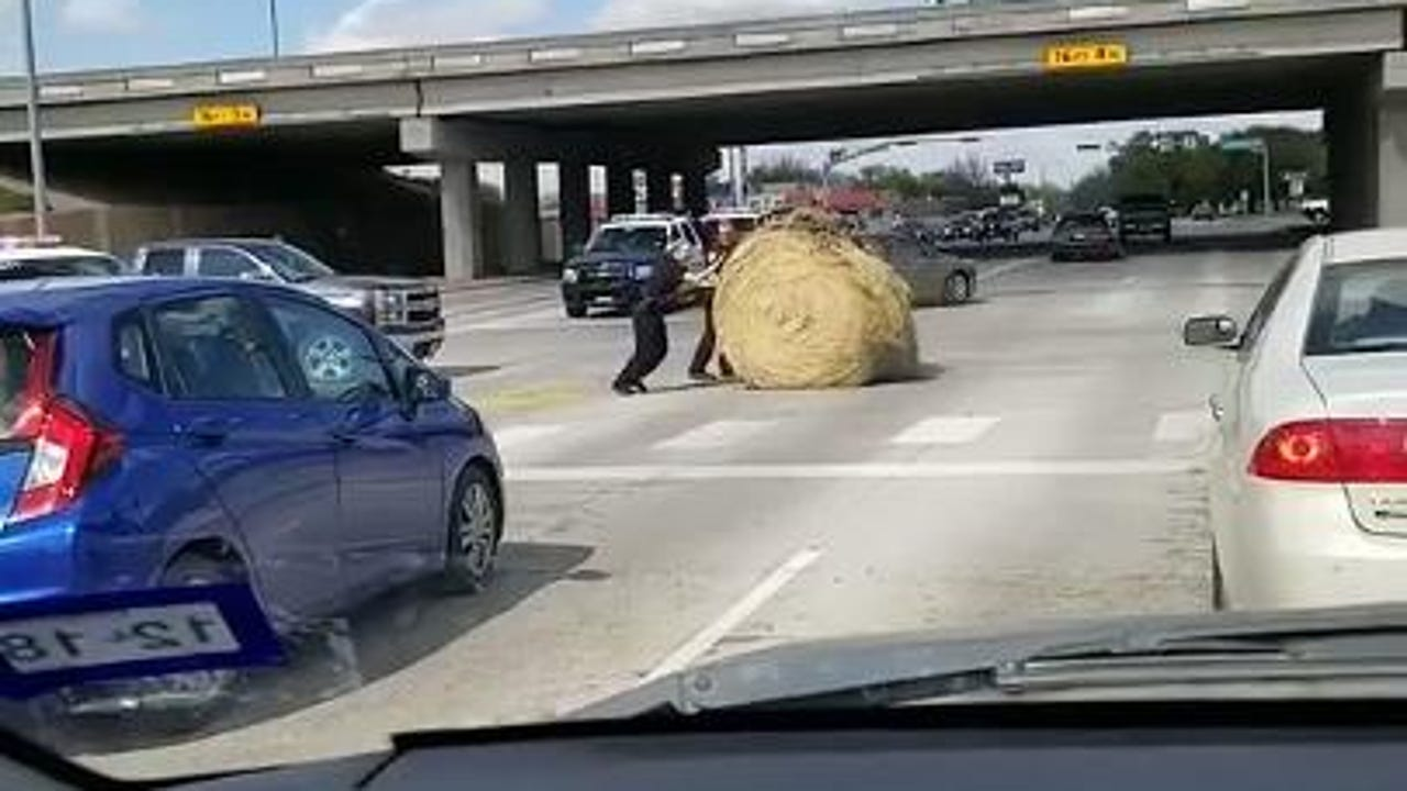 Three police officers in Abilene, Texas baled out drivers by rolling a lost round hay bale out of the intersection at Clack Street and Southwest Drive on Thursday, March 29, 2018. Video is by Dawn Creager, who provided the lighthearted commentary.