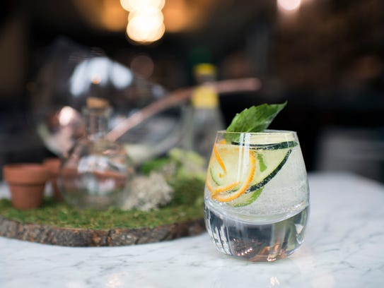 A gin and tonic from Maison 208 in Philadelphia.