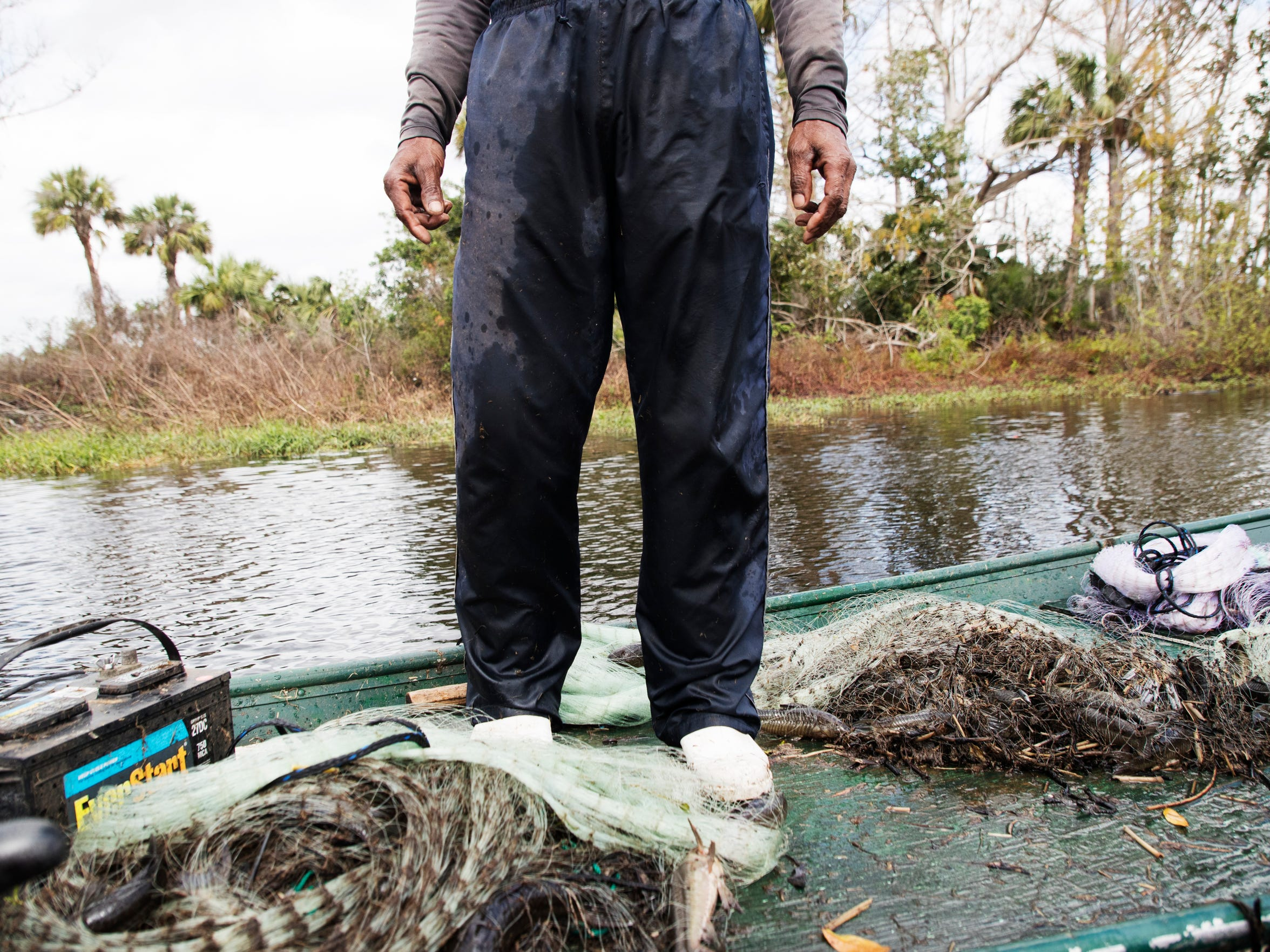 Krishna Jamon castnets for armored catfish on the restored part of Kissimmee River in early February.