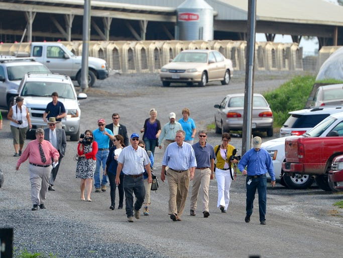 Gov. Terry McAuliffe (center) follows a lane as he walks across Cave View Farm towards a press conference he is holding at the dairy farm in Weyers Cave on Monday, August 25, 2014.