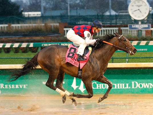 Route du Kentucky Derby/Kentucky Oaks 2016 635843310323109529-PHOTO-20151128-Carina-Mia-Wins-Golden-Rod-finish-