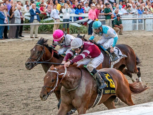 Route du Kentucky Derby/Kentucky Oaks 2016 635916723951633745-Gun-Runner-IR-2-20-2016