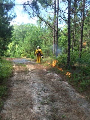 Private burns are being banned by the state fire marshal's office while families shelter in place to stop the spread of coronavirus.