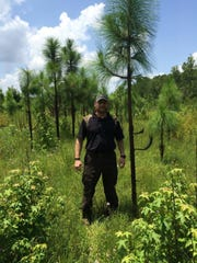 NWTF forester Rodney McKay stands near a longleaf pine