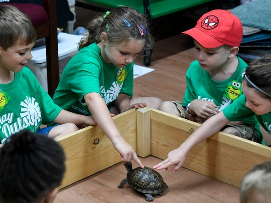 (L-R) Miles Doyle, Nova Burks, Zachary Woodard and Maggie Miller, all 5, touch the shell of Terra the Box Turtle during the Wesselman Woods day camp Monday.