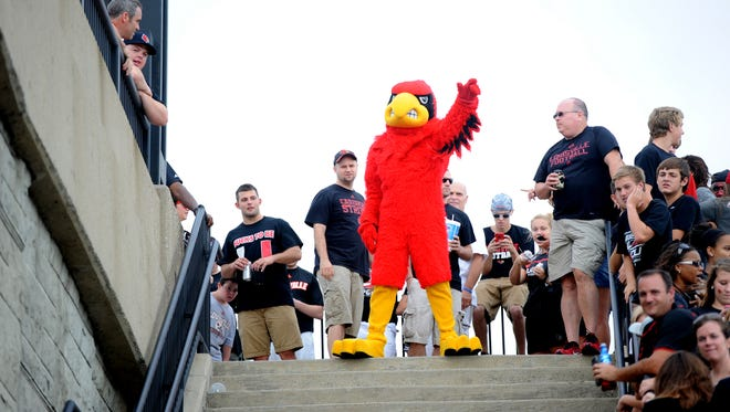 """The Cardinal mascot, """"Louie"""" prepares the fans for the start of the Cards March before Louisville takes on Miami in their ACC debut on Monday at Papa John's Cardinal Stadium. (By David Lee Hartlage, Special to the C-J) Sept. 1, 2014."""