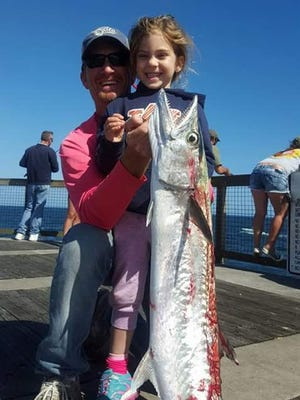 Chad Cooper's 5-year-old daughter Malaria caught this king mackerel Saturday morning (April 16) off the Navarre Pier. The fish weighed 20 pounds.
