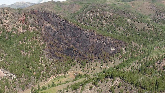The Sierra Front Wildfire Coooperators made this photograph available showing the Swauger Fire north of Bridgeport, Calif.