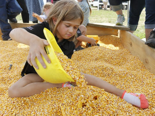 Brooklyn Heiman, 7, plays in the corn box at the 2018
