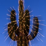 5 uniquely Arizona holiday traditions and events